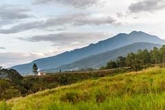 DSC_2445.jpg (jojo nicdao) Tags: travel nature beauty landscape scenery philippines mindanao bukidnon outdoorphotography nicdao