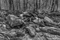 Roadside Waterfall - B&W (Don3rdSE) Tags: park trees bw mountains canon landscape eos waterfall nationalpark tn tennessee scenic historic april 5d canon5d greatsmokymountains cadescove 2015 don3rdse 3rdsiblingphotography