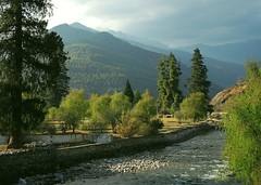 Bhutan-Paro river (ustung) Tags: trees mountains green river landscape bhutan paro