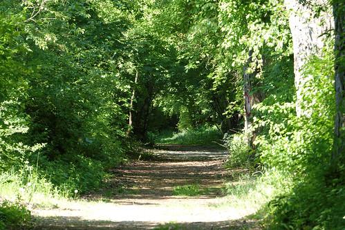Wandern im Selztal