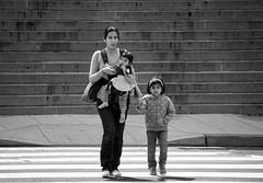 Mother With Children at Gallery Place (John Bense) Tags: street city urban blackandwhite baby monochrome children washingtondc chinatown gallery child place walk mother sidewalk galleryplace crosswalk carry