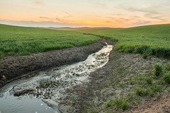 Palouse (imbaoroh) Tags: sunset summer nature water colors field grass creek canon landscape outdoors photography washington spring stream university state outdoor farm wheat finals wsu pullman fields week streams farmer hdr palouse