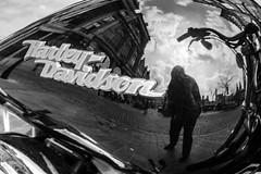 Harley Davidson selfie (Jan Herremans) Tags: bw belgium motorbike harleydavidson gent selfie janherremans