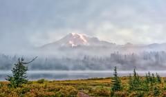 Ethereal Beauty (Philip Kuntz) Tags: misty sunrise dawn washington mtrainier daybreak mists mtrainiernationalpark reflectionlakes