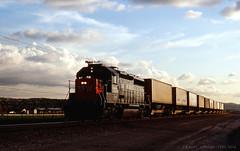 Sun Pig-2 (GRNDMND) Tags: california trains sp locomotive pomona railroads southernpacific espee emd spadra gp402