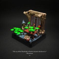 012 - Mandrakes (roΙΙi) Tags: harrypotter chamberofsecrets hermione ron professorsprout mandrakes interior floor secretlynevilleisageniusthatshowyousleepthroughalessonlegally hogwarts rowling bricks magic vignette