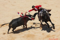 La Vicens (Bernard Bost) Tags: canon corrida toro languedoc gard nmes 2016 lavicens corridaderejn
