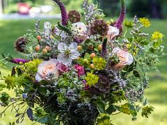 Floral Arrangement_0014 (smack53) Tags: flowers plants floral canon outside outdoors spring blossoms powershot floralarrangement springtime g12 canonpowershotg12 smack53