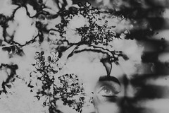 (emmakatka) Tags: flowers blackandwhite woman eye floral beauty soft makeup lilac infrared inverted muted lilacbush emmakatka