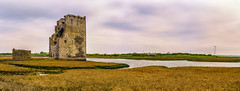 Carrigafoyle Castle (Falcdragon) Tags: travel ireland panorama holiday castle abandoned landscape ruins europe fortification thewildatlanticway ilce7 sonya7alpha