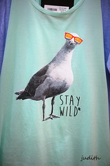 stay wild (judecat (getting back to nature)) Tags: shirt newjersey seagull boardwalk shirtdesign wildwood seagullwithglasses