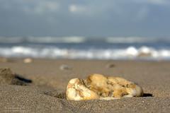 Am Meer (7) (Spinnerelschen) Tags: holland strand meer