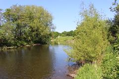 river wear (kokoschka's doll) Tags: river wear batts bishopauckland
