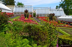 (Zak355) Tags: gardens scotland scottish bute rothesay isleofbute ardencraiggardens