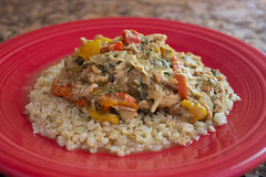 Crockpot Thai Peanut Chicken (dmoranphotog) Tags: red food chicken dinner fiestaware biselblog