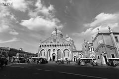 Basilica del Santo, Padova (Davide Anselmi) Tags: bw blackwhite italia bn biancoenero santantonio padova 2016 basilicadelsanto davideanselmi