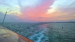 Pink Sunset - 3 (lemoncat1) Tags: cruiseship sea sunset colorfulsunset horizon pinkclouds pinksunset