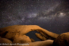 ARCH ROCK JOSHUA TREE 2016 (Robert Aycock) Tags: landscape california desert nature tree joshua natural national rock joshuatree joshuatreenationalpark mojave park sky sunset wilderness southwest southwestern usa outdoor arid nightsky outdoors formation dry plant wildlife travel shootingstars american rocks milkyway arch nationalpark galaxy evening west states shrub rocky light hot heat sand outside shilouette starsbackground starrynight roadtrip summer picturesque nationalparks boulders tourism range play environment recreation sandstone sport dynamic barren drought climbing boulder naturalwonder foreground illustration magical majestic astronomy warm silhouette unitedstates rockformation
