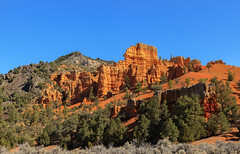 Red Canyon (http://fineartamerica.com/profiles/robert-bales.ht) Tags: park blue trees red wild sky orange usa mountains color tourism nature beauty yellow rock stone pine america landscape utah sand sandstone scenery colorful desert outdoor hiking scenic places tourist panoramic canyon erosion formation trail national states geology navajo brycecanyon ponderosa dixie hoodoos iphone rockformation geological redcanyon byway12 desertscape cedarmountain robertbales fredcanyon ofdixienationalforest