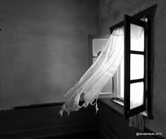 Viento de Poniente (Landahlauts) Tags: almeria almeriatierradecine andalousie andalouzia andalucía andalucia andaluciatierradecine andalusia andalusien andalusiya andaluz bw biancoinero blackwhite blackandwhite blancoynegro cine cinemastudios comarcalosfilabrestabernas desiertodetabernas estudiosdecine film fortbravo fujifilmxpro1 parajenatural pelicula tabernas texashollywood viento wind ventana window luz cortina curtain fort bravo monocromatico андалусия андалузия אנדלוסיה アンダルシア 安达卢西亚 安達盧西亞 安達魯西亞自治區 andalusie andaluzia andaluzio andaluzja أندلوسيا اندلسیہ xf18mmf2r