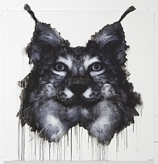 Lynx lynx, 2014, 150 x 150cm, spray can & acrylic on MDF.
