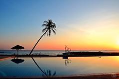 Sunset @Ngapali Beach (jennifer.stahn) Tags: travel sunset tree beach strand nikon asia asien view jennifer burma palm myanmar birma reise ngapali stahn d7000