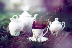 cups (dionn-k) Tags: inspiration green nature coffee purple outdoor cups artisticphotography artisticproductphotography coffeesplash