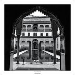 Alhambra (Nik Woschek) Tags: blackandwhite bw españa travelling spain nikon viajando alhambra d750 sw spanien schwarzweis