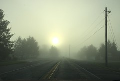 Fog in the midst of Summer: the road to somewhere ! (Walking_amongst_giants) Tags: mist fog mystical enigmatic