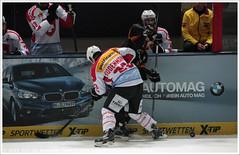 Germany vs Switzerland    vs  (Dit is Suzanne) Tags: germany munich mnchen icehockey 23 forward duitsland eishockey germanyswitzerland olympiahalle ijshockey views100   img2515 canoneos40d  deutschlandschweiz olympiaeisstadion   sigma18250mm13563hsm simonbodenmann 07112014 deutschlandcupeishockey2014 duitslandzwitserland  ditissuzanne