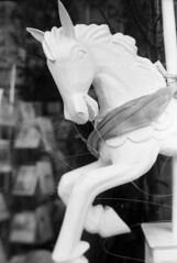 (Elizabeth Ann Aguilera) Tags: new bw mamiya film self mexico kodak albuquerque rangefinder super screen 100mm d76 plus hp5 6x9 medium format 23 extension press tilt developed bellows ilford focusing