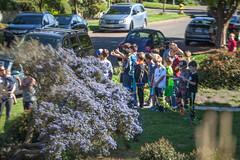 42nd_Brandon_Accident-7 (Pye42) Tags: seattle street children washington accident crowd westseattle frontyard residentialstreet