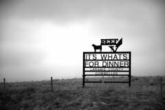 roadtrip_2015_0125bw (newspaper_guy Mike Orazzi) Tags: ranch nikon 7100 beef roadtrip wyoming i80 rancher wy laramiecounty d7100 cowbelles 18140mmf3556g