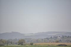 Landscape (janescanlan) Tags: landscape