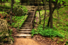 Woodland Stairway (John D. Stocker) Tags: park trees green minnesota stone stairs forest woodland john photography spur woods state outdoor path painted magic steps trail staircase serene mn faerie faeries secluded mankato undergrowth stocker minneopa wwwpaintedspurphotographycom paintedspur