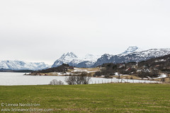 Elvejord (Linnea Nordstrm) Tags: mountain snow mountains green nature water field norway landscape grey norge spring scenery village cloudy small north overcast arctic fjord peaks lyngen