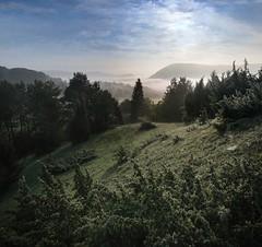 20160526-002F (m-klueber.de) Tags: nebel tau sonnenaufgang morgen rhn 2016 morgenstimmung bergwinkel sinntal mkbildkatalog 20160526002f 20160526