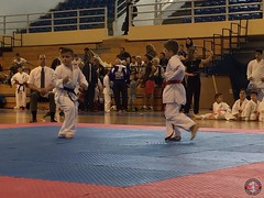 stefanou_15_5_2016_knockdown_201