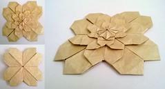 Fractal Sakura (Charul's Origami) Tags: square origami fractal paperfolding meenakshimukerji