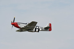 """P-51D Mustang """"Red Nose"""" (albionphoto) Tags: usa reading kate pa b17 worldwarii mosquito corsair mustang fifi dday flyingfortress b29 superfortress maam dehavilland p51d"""