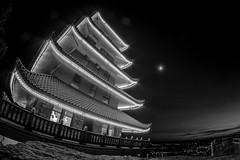 Pagoda b&w (fractal pics) Tags: landscape reading pagoda nightscape fisheye pa cityofreading