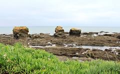 IMG_3482 (-Morgane-) Tags: ocean sea france nature landscape outdoors photography seaside sand rocks sion vende