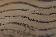 Printed (adamopal) Tags: white black macro texture canon paper 100mm dots printed textured macro100mm canon7d canon7dmkii canon7dmarkii