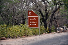 India - Rajasthan - Jaipur - Charan Mandir - Signboard (asienman) Tags: india rajasthan jaipur asienmanphotography