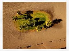 Vacation doll shots from Spain #malaga #benajarafe #fashionroyalty #integritydolls #dolls #ayumi #summervacation #beach (swirlgirl2008) Tags: malaga benajarafe fashionroyalty integritydolls dolls ayumi summervacation beach