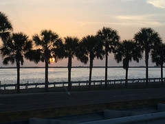 Sunset (soniaadammurray - SLOWLY TRYING TO CATCH UP) Tags: iphone sunset sky clouds trees water sea fence road driving tampa florida usa nature