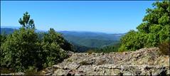 Montcalm, panorama Nord, vue sur le Mont Lozre (gunger30) Tags: saintjeandupin montcalm montagne cvennes gard campagne ciel panorama pointdevue horizon
