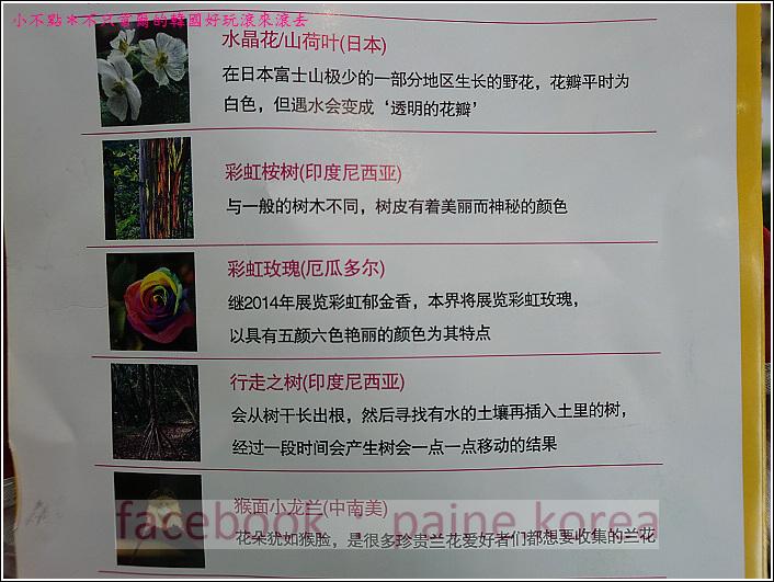 高陽國際花卉博覽 (57).JPG