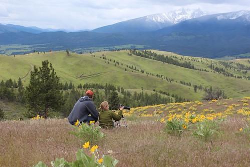 Triple Creek Ranch Nature Safari