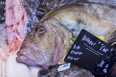 Saint Pierre (Giancarlo - Thanks for > 1,5 Million Views) Tags: fish nikon ile poisson march r ileder turbot laflotte d810